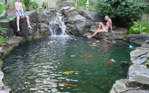Искусственный плавательный водоем,Источник: Freshideen