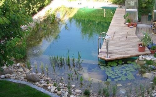 Садовый пруд для купания, Автор:First Last.