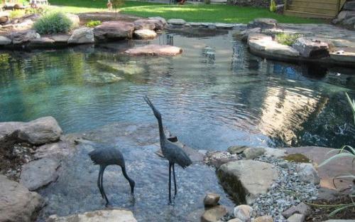 Современные природные бассейны, источник:  trendhmdcr.com Home Design Trends!