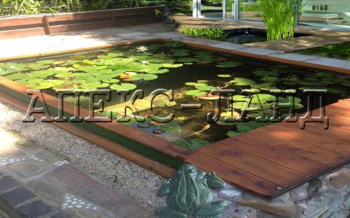 штучна водойма для рослин - водний сад