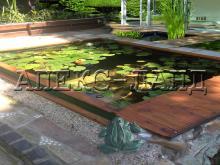 пруд для водныйх растений